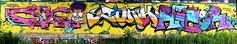 graffiti in Amsterdam (wojofoto) Tags: amsterdam nederland netherland holland amsterdamsebrug flevopark hof halloffame legalwall graffiti streetart wojofoto wolfgangjosten