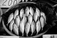L1001584 (Four_cats) Tags: leica leicanoctiluxm50mmf095asph 竹圍漁港 漁獲 さかな カキ 台灣 taiwan