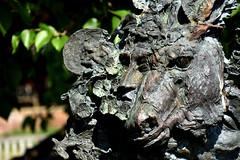 """A Midsummer Night's Dream"" (42jph) Tags: nikon d7200 stratford upon avon stratforduponavon uk england warwickshire halls croft shakespeare daughter statue sculpture"