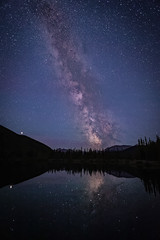 Forgetmenot Pond (deirdre.lyttle) Tags: alberta canada forgetmenotpond kananaskiscountry nightphotography trees water sky milky way reflections