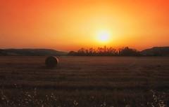 **Sunset* (* landscape photographer *) Tags: sunset nature summer valley colors landscape italy flickr 2018 nikon