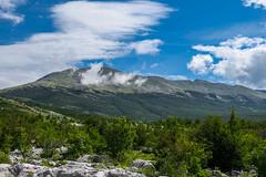 Velež mountain, Bosnia and Herzegovina (HimzoIsić) Tags: landscape mountain mountainside clouds sky grassland tree forest outdoor nature