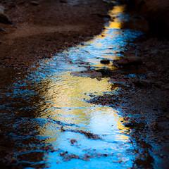 In Canyons 254 (noahbw) Tags: d5000 dof grandstaircaseescalantenationalmonument nikon utah williscreek abstract autumn blur canyon creek depthoffield desert erosion landscape light natural noahbw reflection rock slotcanyon square stone water