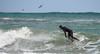 P4168796 (Brian Wadie Photographer) Tags: fistral towanbeach stives surfing trebar