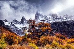 The colors of autumn (Valter Patrial) Tags: mountain mountains trees autumn clouds colors landscape land patagonia elchaltén santacruzprovince argentina ar