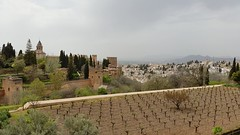 Grenade, l'Alhambra (Chaufglass) Tags: grenade andalousie alhambra espana