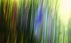 Into the light (‹ Wim ›) Tags: abstract polychrome colours slowshutter motion