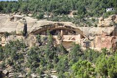 "Mesa Verde, Colorado, US August 2017 873 (tango-) Tags: mesaverde ancestralpuebloans montezuma canyon us usa unitedstates america westernamerica west ovest америка соединенныештаты сша 美國""美國""美國 amerika vereinigtestaaten アメリカ 米国米国 соединенные штатысша"