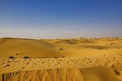 The desert of Abu Dhabi (Jim 03) Tags: experts technical delegates worldskills 2017 culture history adventure united arab emirates abu dhabi's transformation beautiful desert island cosmopolitan city capital arabia international cuisine stars jim03 jimhoffman jhoffman jim wwwjimahoffmancom wwwflickrcomphotosjhoffman2013