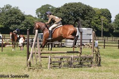 IMG_9377-141 (Mark Someville) Tags: greatwoodcharityopenday30062018 greatwood charity ror race horse exracehorse rehoming stud aintree newbury doncaster ascot cheltenham greatwoodcharityshow30062018
