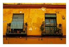 fenêtres et stores (Marie Hacene) Tags: séville sevilla andalousie espagne purs orange fenêtres stores pots fleurs façade