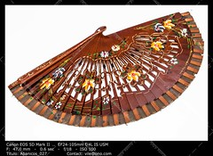 Spanish fan (__Viledevil__) Tags: spanish culture andalusia spain accessory andalucia art beauty color colorful craft cultural decoration design elegance fan fashion flamenco lacquered object open souvenir traditional vibrant wind wood wooden spanishculture