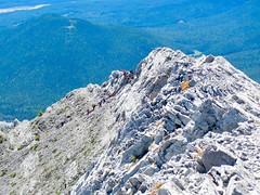 Nihahi Ridge Scramble - Today, it seems we have followers (benlarhome) Tags: kananaskis alberta canada nihahiridge trail path hike scramble rockies rockymountain