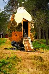 Tag 12 (6) (uwesacher) Tags: wald gras baum tier landstrase camping campingplatz gold ei alien ufo fuji xe3 joke fake gällivare sauna