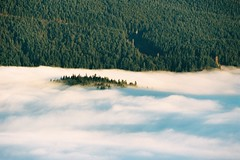 Green Island in Cloud Ocean (mmaslyuk) Tags: burnaby explorebc vancouver spring morning clouds landscape 135film 35mm portra160 portra kodak photography film analog canonef70200f4l eos3 canon