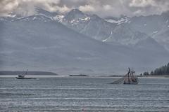 Seiner Mtn Ldscp 673 (Gillfoto) Tags: seine seineboat commercialfishing alaskacommercialfishing alaska juneau salmon