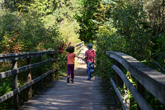 Running Across the Bridge (Vegan Butterfly) Tags: outside outdoor whitemud ravine nature reserve homeschool homeschooling kids children friends together people fun bridge run running