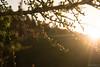 Lazzarà_23.04.2018-16 ( YariGhidone ) Tags: rosso vanlife van adventure wild night camping campeggio lazzarà top paradise mountains landscape