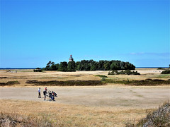 Golf course in the dunes near Falsterbo - Sweden (N3335) (Le Photiste) Tags: clay golfcourse falsterbosweden falsterbofyr1795adfalsterbosweden lighthouse bluesky clouds nature planetearthnature planetearth ngc sweden dunes nikoncoolpixs9900 nikon holidays happyholidays summerholidayseason ferien vacances vacations landscape balticsea waterscape afeastformyeyes aphotographersview autofocus artisticimpressions anticando perfectview beautifulcapture creativeimpuls cazadoresdeimágenes blinkagain bestpeople'schoice digifotopro damncoolphotographers django'smaster digitalcreations friendsforever finegold fairplay greatphotographers groupecharlie peacetookovermyheart hairygitselite ineffable infinitexposure iqimagequality interesting inmyeyes lovelyflickr livingwithmultiplesclerosisms myfriendspictures mastersofcreativephotography magicmomentsinyourlife niceasitgets photographers prophoto photographicworld planetearthbackintheday photomix soe simplysuperb showcaseimages simplythebest thebestshot theredgroup thelooklevel1red vividstriking worldofdetails yourbestoftoday simplybecause wow thegreen