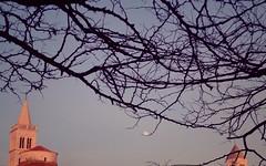 Branches at sunset [no. 2] (Elvis L.) Tags: branches moon sky sunset church zadar dalmatia croatia belfry belltower