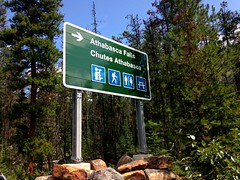 Signage in the park (Trinimusic2008 -blessings) Tags: trinimusic2008 judymeikle nature alberta jasper canada athabascusfalls summer falls july 2018 canadianrockies trees park