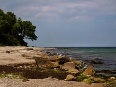 Naturstrand auf Fehmarn (mohnblume2013) Tags: insel ostsee fehmarn deutschland strand natur steine