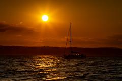 Belfast Lough sunset ( explored ) (Chris-Henry) Tags: sunset sun sundown countydown countyantrim northernireland ireland yacht hills sea bangor trip lightrays homeward