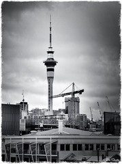 Reigning over Development (PEN-F_Fan) Tags: coolcentered auckland monochrome mzuiko12100mmf40pro postprocessing luminar2018 photoborder photoedge tonalityck street mirrorless filmlook olympusviewer zoomlens city m43 microfourthirds olympuspenf photoframe skytower mft preset construction constructioncrane building harbor skyline architecture blackandwhite skylum newzealand