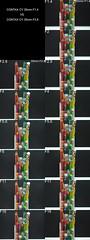 CONTAX 35mm F1.4 vs F2.8 整合圖_標焦段和光圈值 (阿鶴) Tags: chenhowen chen howen ho wen wesleychen wesley 阿鶴 鶴仔 阿鶴仔 contax cy 35mm 35 mm f14 f 14 f28 28 廣角之王 比較 整合 compare vs