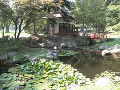 Sonnenberg Gardens & Mansion Historic Park  - Canandaigua NY   - The Japanese Tea House (Onasill ~ Bill Badzo) Tags: sonnenberg gardens mansion historic park canandaigua ny ontario county onasill nrhp queen anne architecture historical finger lakes japanese garden tea house photo border outdoor flower plant lily pads unitedstates mrs thompsonss teahouse vintage old childrens play 100 years interior restoration progress rochester oriental haiku bonsai society bridge lilypads rockgarden canon sunlight sun light