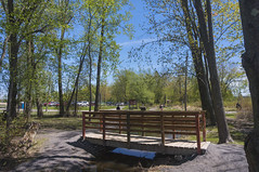 A day in Petrie Island (lezumbalaberenjena) Tags: petrie island ottawa orleans canada canadá ontario primavera spring time river nature natural naturaleza lezumbalaberenjena 2018
