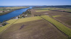 Cane fields (OzzRod (on the wallaby)) Tags: dji phantom 3a advancedquadcopterdronedji fc300sruralagriculturefarmingsugarcanerichmond riverpimlicoballinansw far north coast