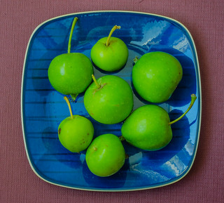 Tiny apples from the garden