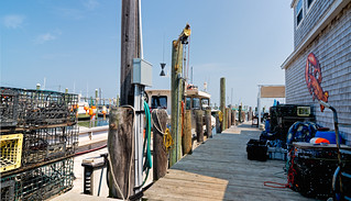 Lobsterman's dockside view