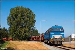 BE D21 + Grindtrein, Almelo Dollegoor (LokLife) Tags: be bentheimer eisenbahn d21 g2000 grind gravel almelo dollegoor db dbc osnabruck 41784 41785 faccs