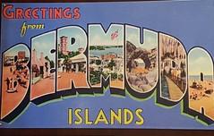 20180709_121438 (Tammy Jackson) Tags: bermuda holiday vacation