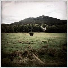 Sur la route, en Haute-Ardèche... (woltarise) Tags: france ardèche montgerbierdejonc couleurs hipstamatic iphone5 village forêt champs