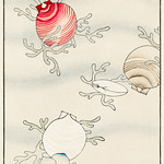 Shell fish illustration from Bijutsu Sekai (1893-1896) by Watanabe Seitei, a prominent Kacho-ga artist. Digitally enhanced from our own original edition. thumbnail