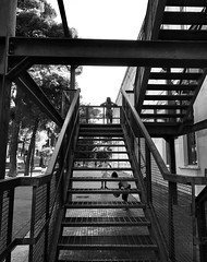 Untitled (marcus.greco) Tags: stairs blackandwhite people iron architecture