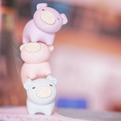 205/365 : Stacking (♥GreenTea♥) Tags: pig eraser pigeraser pigs erasers pigerasers bluepig pinkpig purplepig purple blue pink iwako iwakoeraser iwakoerasers イワコー t1i canon canont1i canont1irebel canonrebel eos canoneosrebelt1i ef100mmf28macrousm canonef100mmf28macro hdr googlenikcollection nikcollection colorefexpro viveza hdrefexpro 365 photoaday pictureaday project365 365toyproject oneobject oneobject365daysproject 365the2018edition 3652018 square squarecrop day205365 365day205 day205 project365205 24july18 project36507242018 07242018