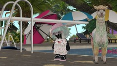 Morning Visit to the Ool (suzumezuki) Tags: wynx badger tiny tinies raglanshire fashion style clothes clothing shopping blogger avatar magsminimall mags cute icecream alpaca jian wasabipills tinyclothing secondlife sl ool pool summer pink smallavatar tinyavatar community