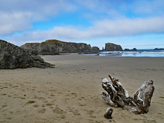 bn1070456stumped (thom52) Tags: bandon or oregon coast coastline beach fog