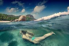 La Chin De Mer (Titanium007) Tags: seychelles ladigue underwater mermaid ansesourcedargent turquisewater islandlife island wanderlust sea