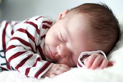Premier book Tiago (Kwen Lr photographies) Tags: papa nouveauné 50mmf18 canon 1100d naissance bébé baby birth douceur studio child