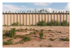 Wild things (Markus Lehr) Tags: dry hot summer landscape wall derelict industrial factory trees textures bluesky clouds manmadelandscape mood atmosphere contemporaryphotography luckenwalde germany markuslehr