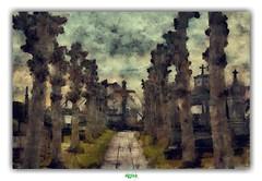 LONG WALK (régisa) Tags: cemetery cimetière dorpstraat sintmichiels brugge begraafplaats
