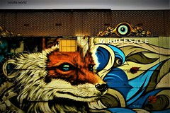 Fox-eye (SCOTTS WORLD) Tags: adventure america architecture art fun fox animals 313 exploring exhibit easternmarket detroit digital downtown detail february 2018 michigan motown midwest motorcity windows city color panasonic pov perspective urban usa unitedstates urbanart graffiti