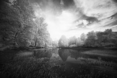 Afternoon Infrared (DRCPhoto) Tags: irconverteddslr canon5d infrared digitalinfrared digitalir cheatriver westvirginia