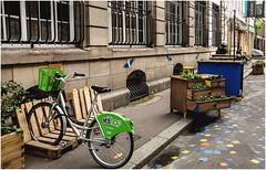 21- RUE DU JEU DES ENFANTS - ESTRASBURGO - FRANCIA - (--MARCO POLO--) Tags: ciudades rincones calles curiosidades