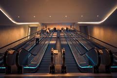 Under the World Trade Center | Manhattan (soomness) Tags: newyork newyorkcity newyorker usa unitedstates wtc worldtradecenter oculus landscape travel travelphotography fujifilmxt2 fujifilm fuji fujinon xt2 xseries xf16mmf14wr symmetry symmetrical geometry architecture design